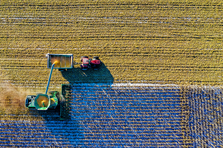 Building a sustainable supply chain with Earth Observations